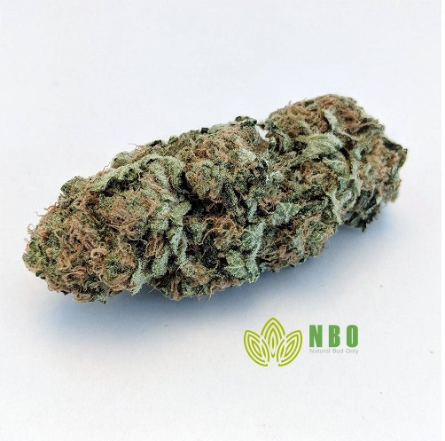 Platinum Girl Scout Cookies (GSC)
